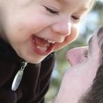 Billeder_Sådan udvikler børn syn sig